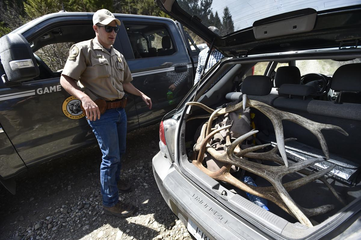 Game Warden Willie Miller takes a look at the shed antlers
