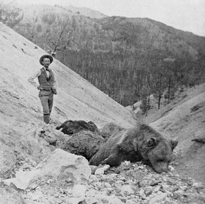 Grizzly-killing gas