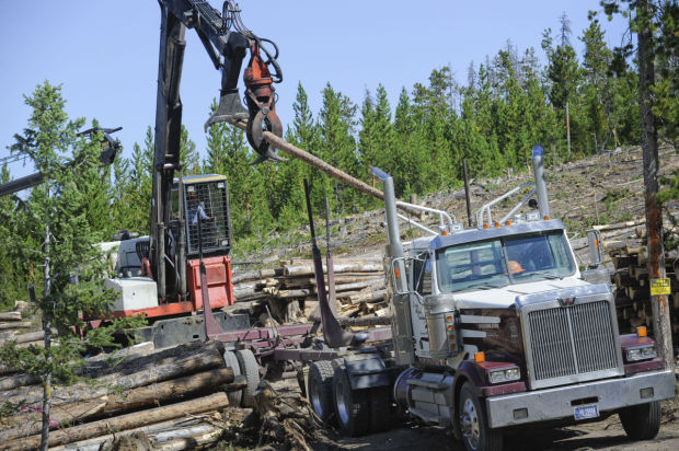 Chessman Reservoir Logging