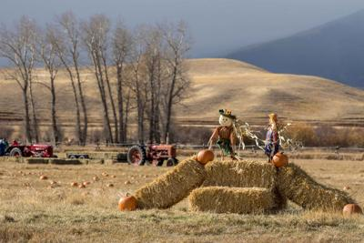 Pumpkin Sunday event