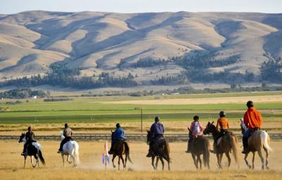 Endurance Horse Racing