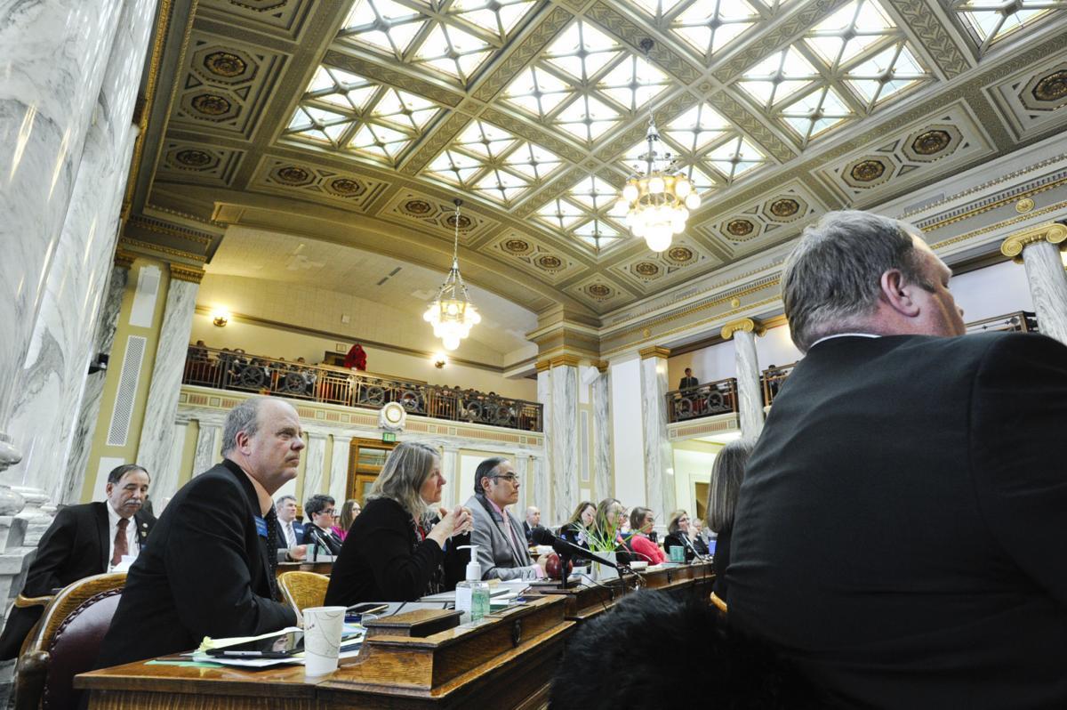 Representatives listen to floor speeches during the 2019 Montana Legislature.
