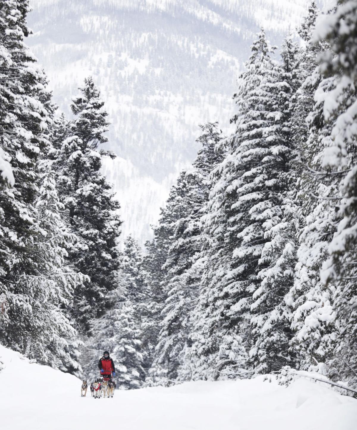 Snowy Race to the Sky