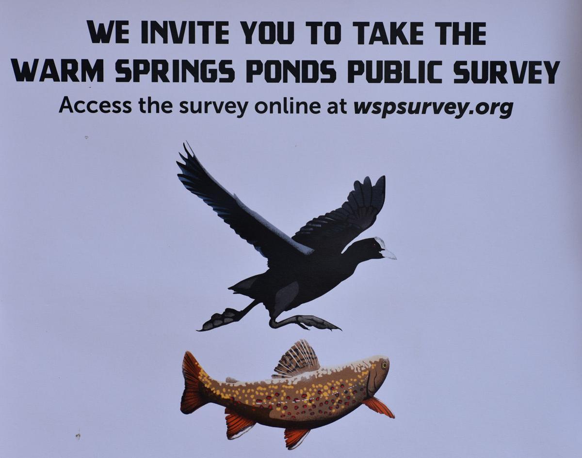 Warm Springs Ponds public survey