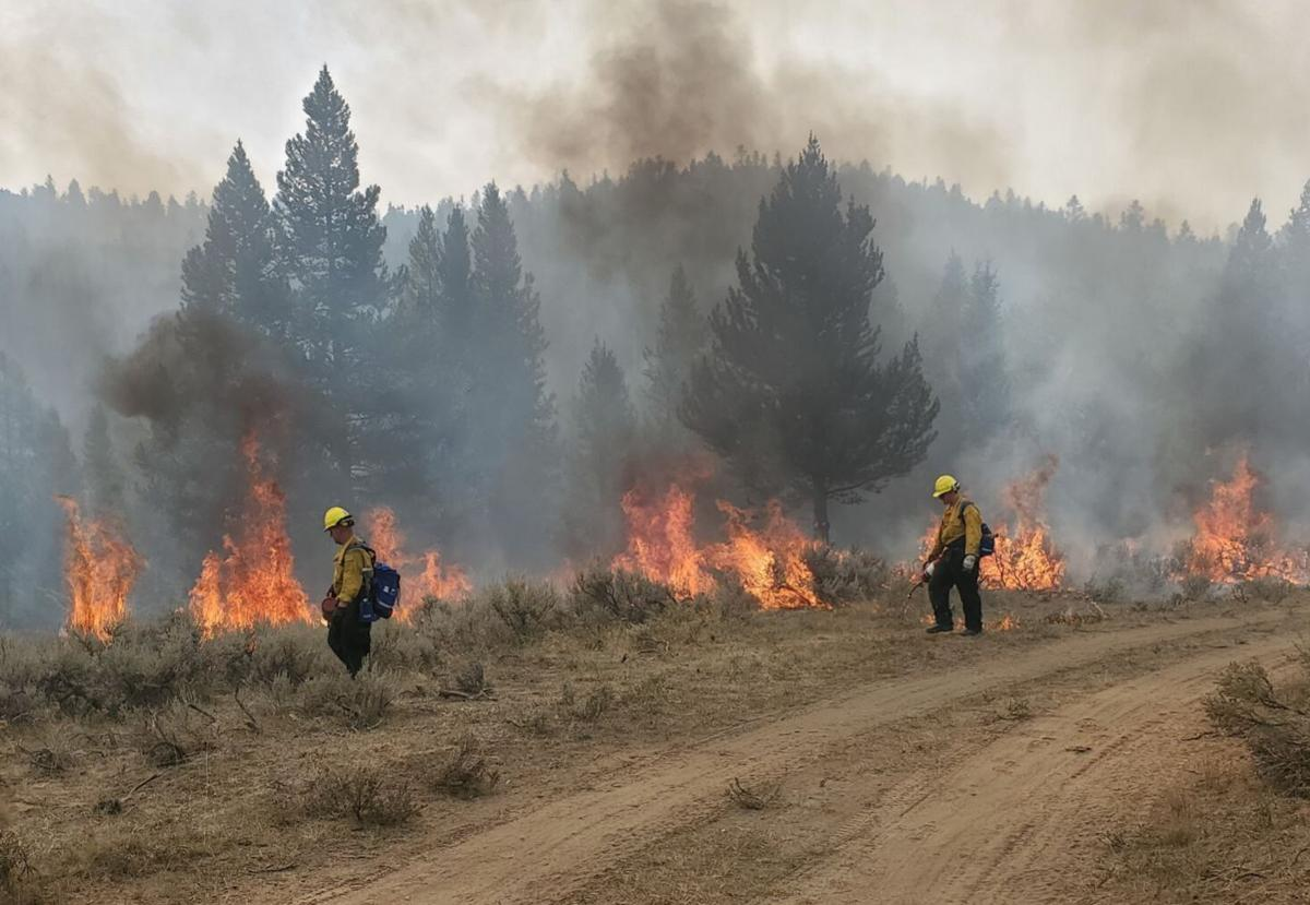 Soldiers with the Montana National Guard conduct firefighting operations