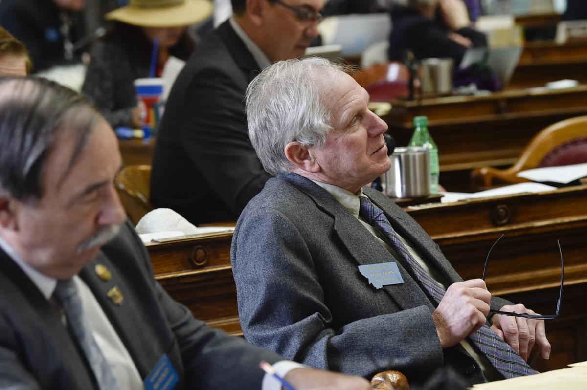 Rep. Dave Fern, D-Whitefish,