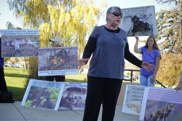 Wolf Protest at Capitol