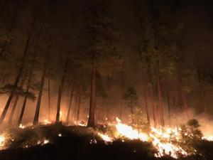 These Montana wildfire photos from Inciweb put you on the fire line