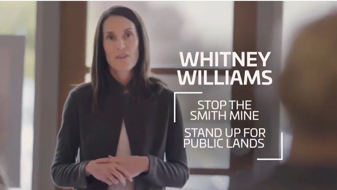 Screengrab from Williams ad