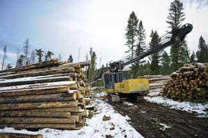 Ninth Circuit allowing Helena-area Forest Service project to proceed