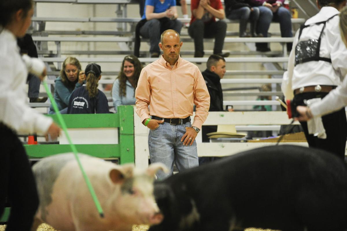 4-H Swine Showmanship - Last Chance Stampede and Fair