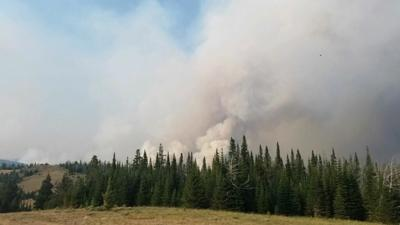 woods creek fire.jpeg (copy)