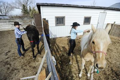 Olivia Bratton, left, and Aspen Dean brush horses