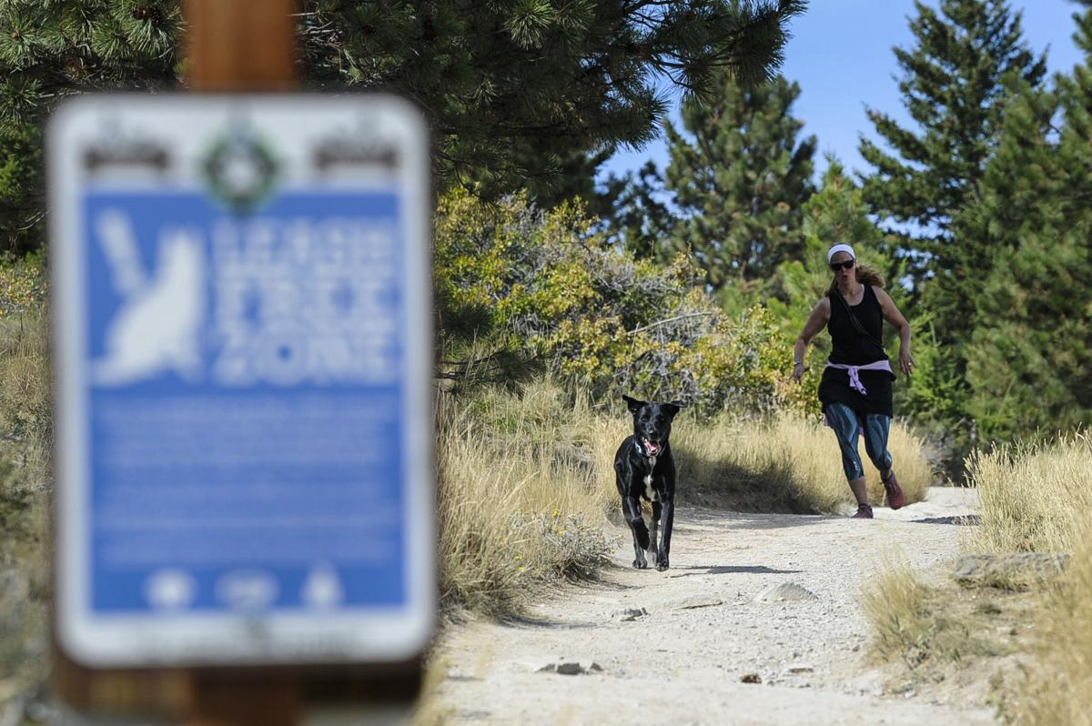 A trial runner and her dog use the Mount Helena trail system on Wednesday.