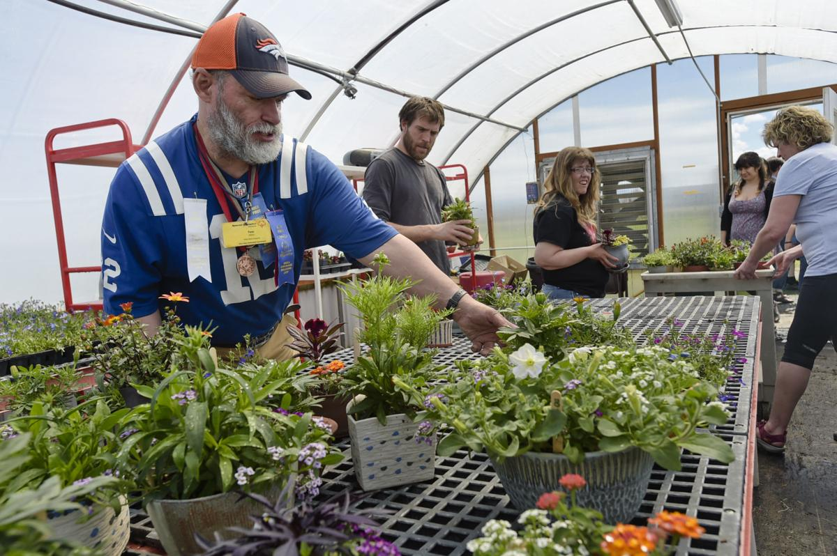 Thomas Ribera helps Archie Bray staff load the nearly 1,000 potted plants