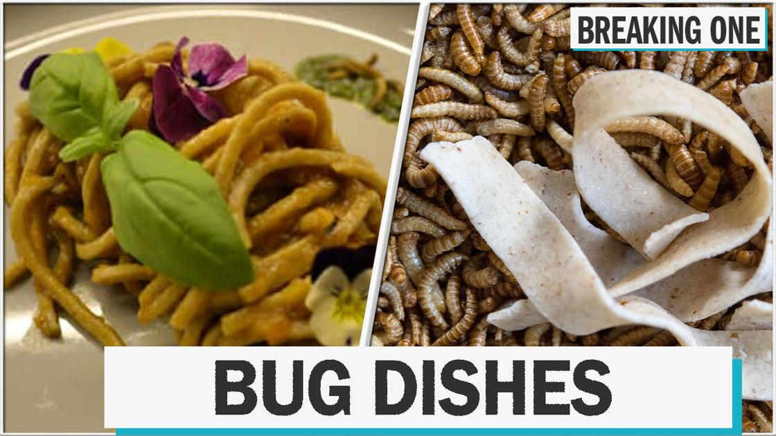 Here's what you can eat at this insect-only restaurant
