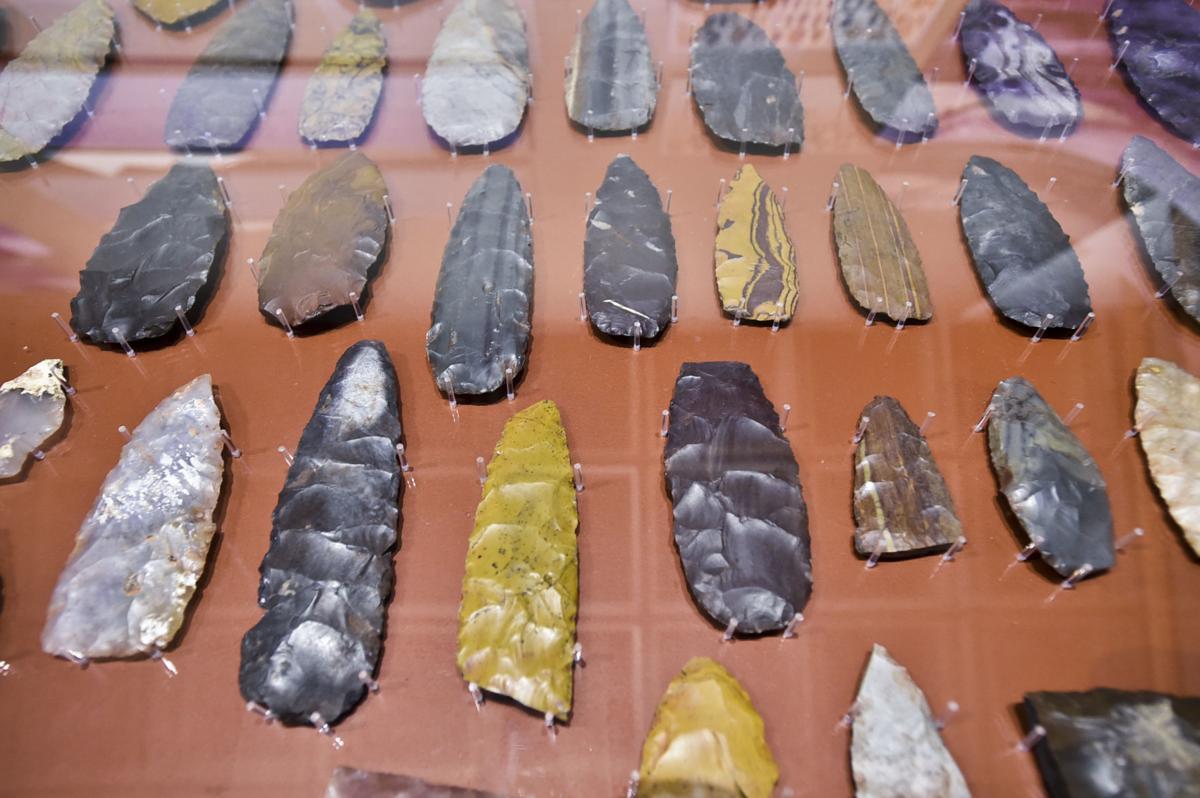 Clovis points on display from the Anzick clovis burial sit