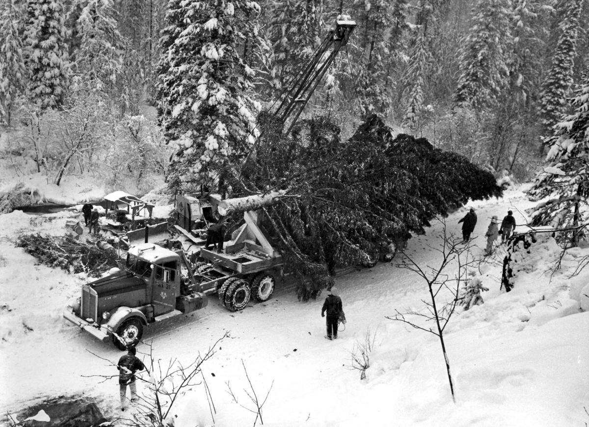 111717 1958 national christmas tree.jpg
