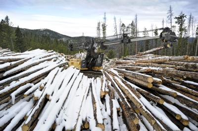 Logs flow from Elliston-area timber project as legal appeal