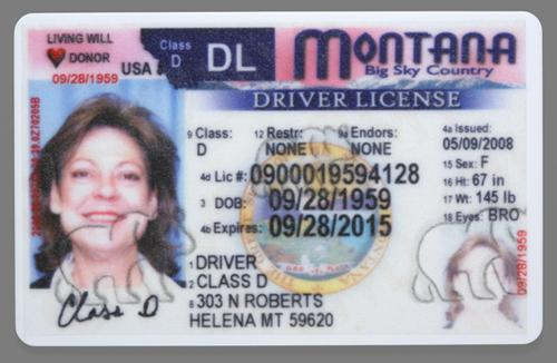 Drivers license number on checksum for Driver license motor vehicle record