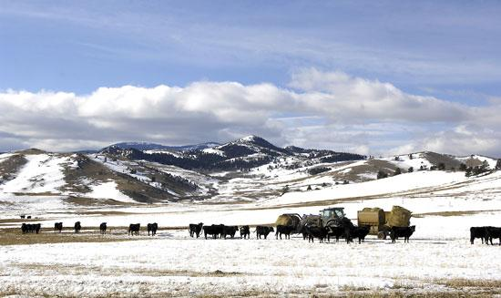 Largest-ever donation to Montana Land Reliance