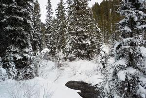 Snowpack near or above normal for most of Montana