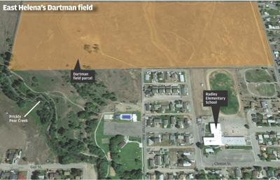 Dartman field