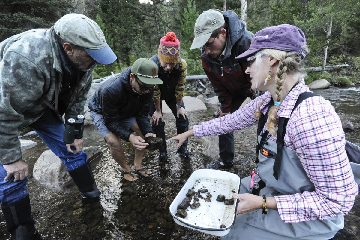 Sara Owen, Ecologist for Montana Natural Heritage Program, right, points out aquatic insects