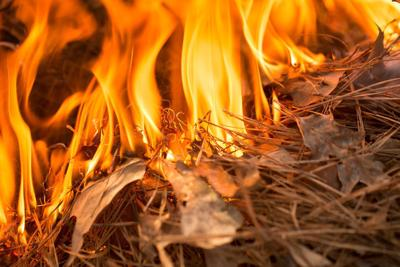 Stage I fire restrictions lifted