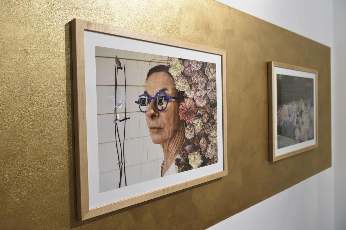 Helena artist Bonnie Lambert photography