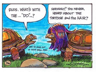 The tortoise's hair