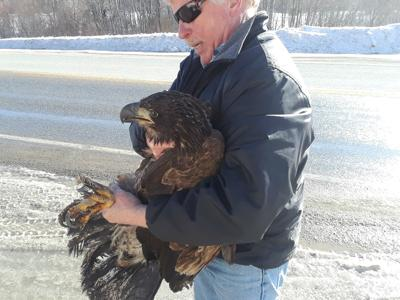 Pat Shanley with Eagle