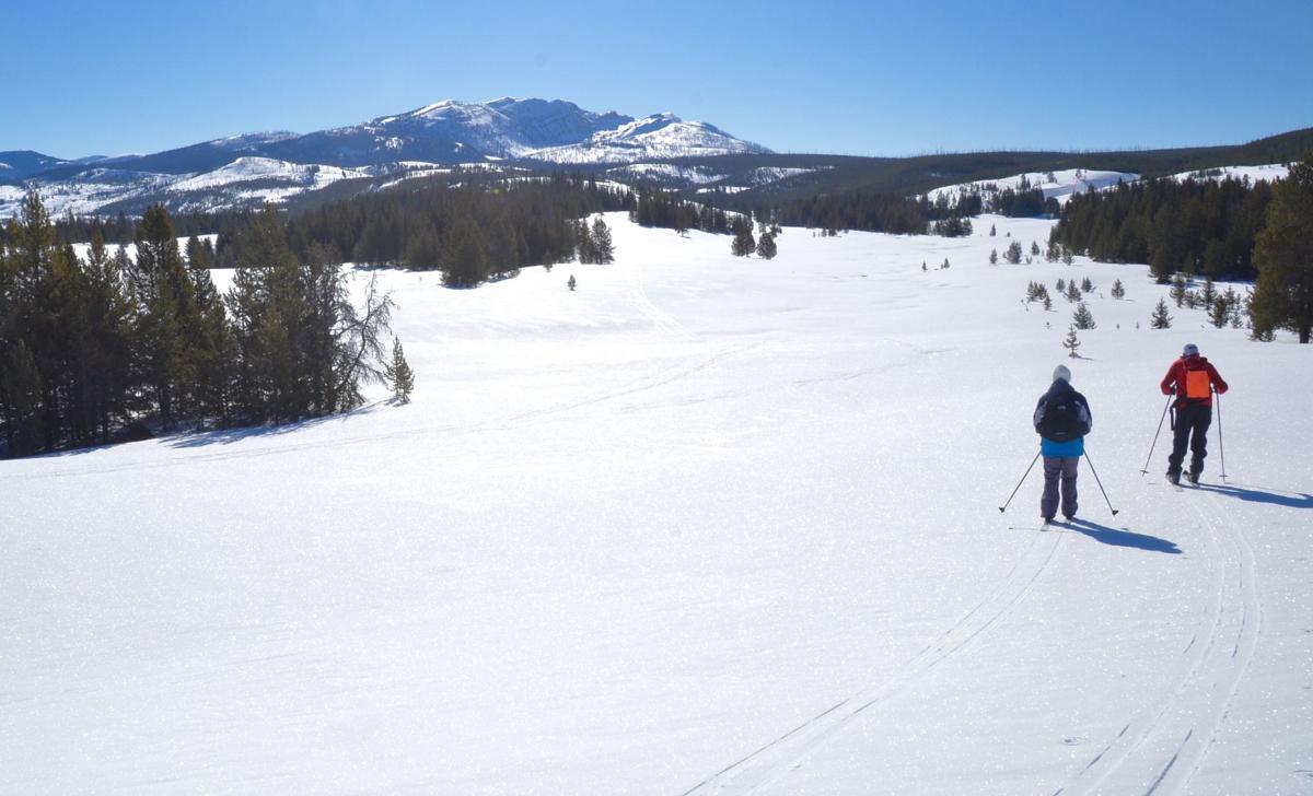 Bighorn trail