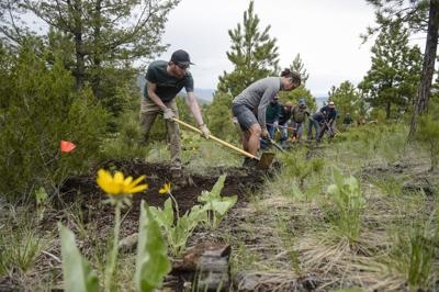 Photo: Volunteers carve out new trail in the South Hills (copy)