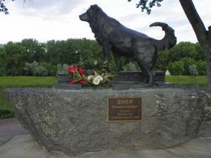 Dog Monument.jpg
