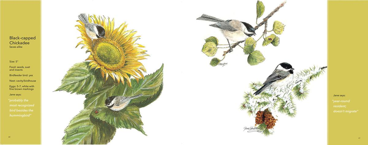 A spread from the inside of 'For the Love of Birds'