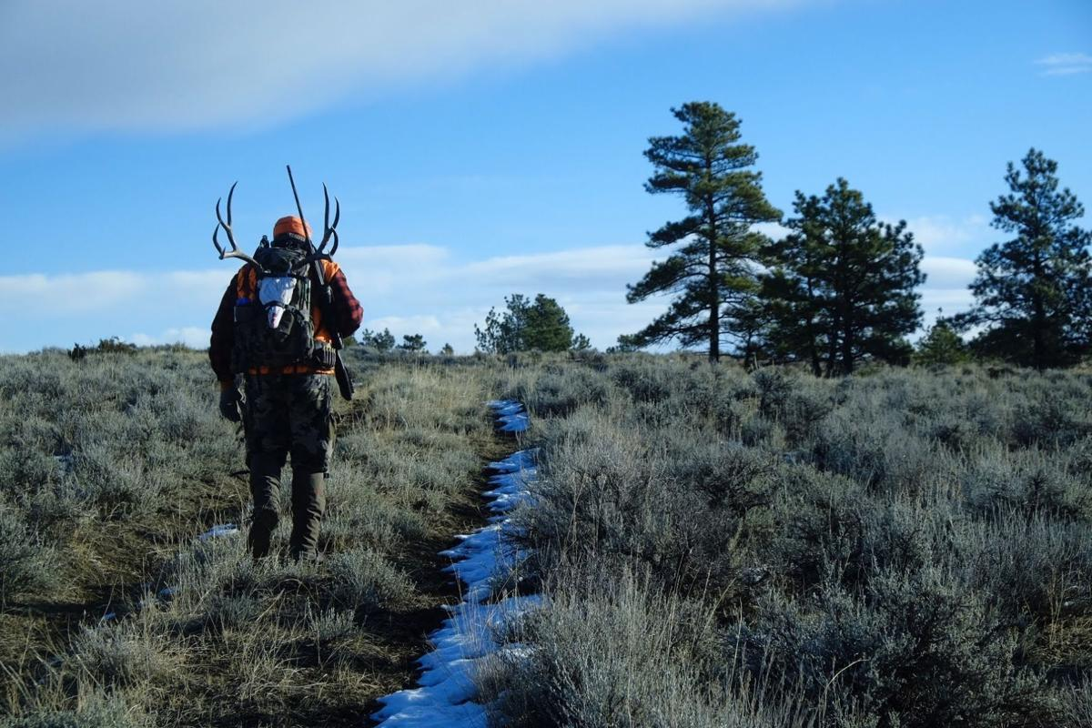 A successful hunter hikes his game