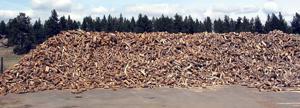 firewood pile.JPG