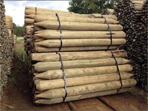 large treated posts.JPG