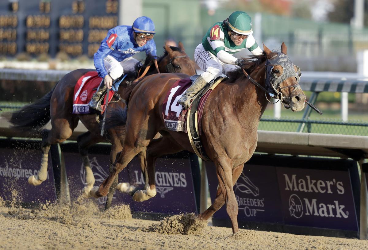 betting on horses in illinois