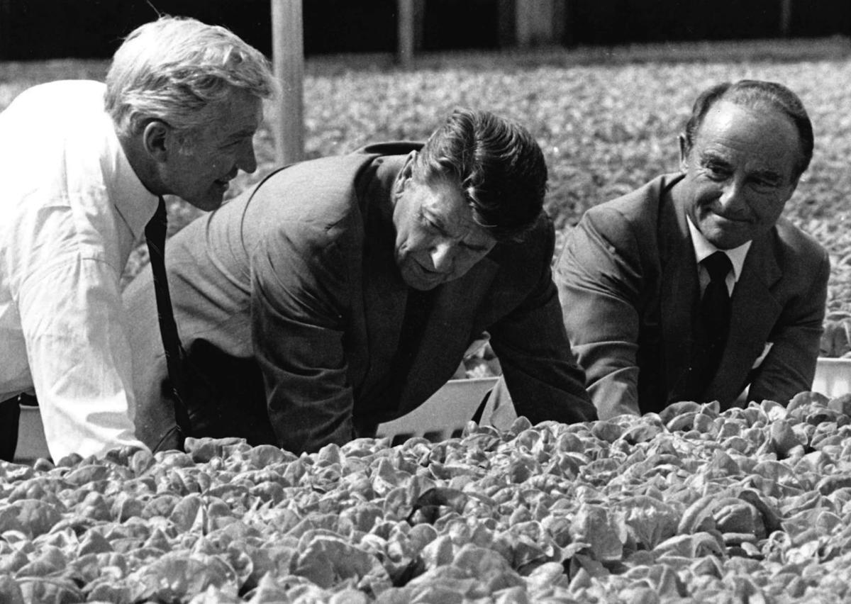 Andreas, Reagan, Percy