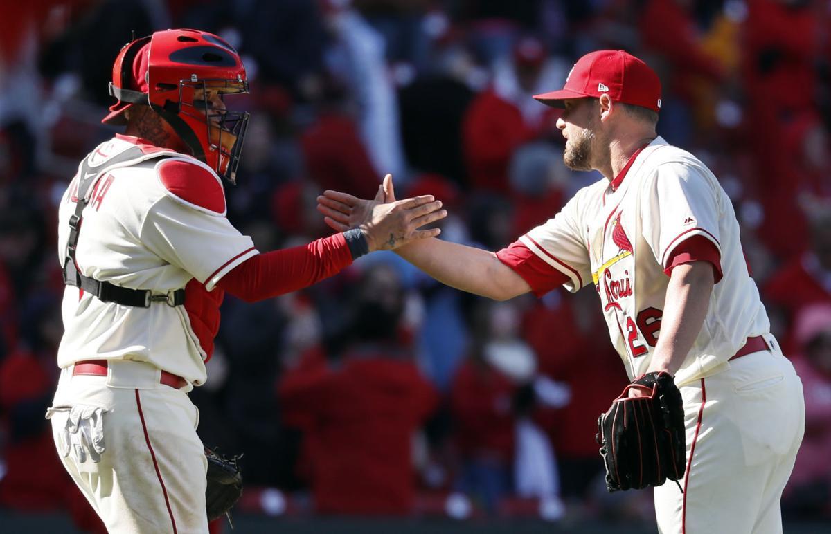 Diamondbacks Cardinals Baseball
