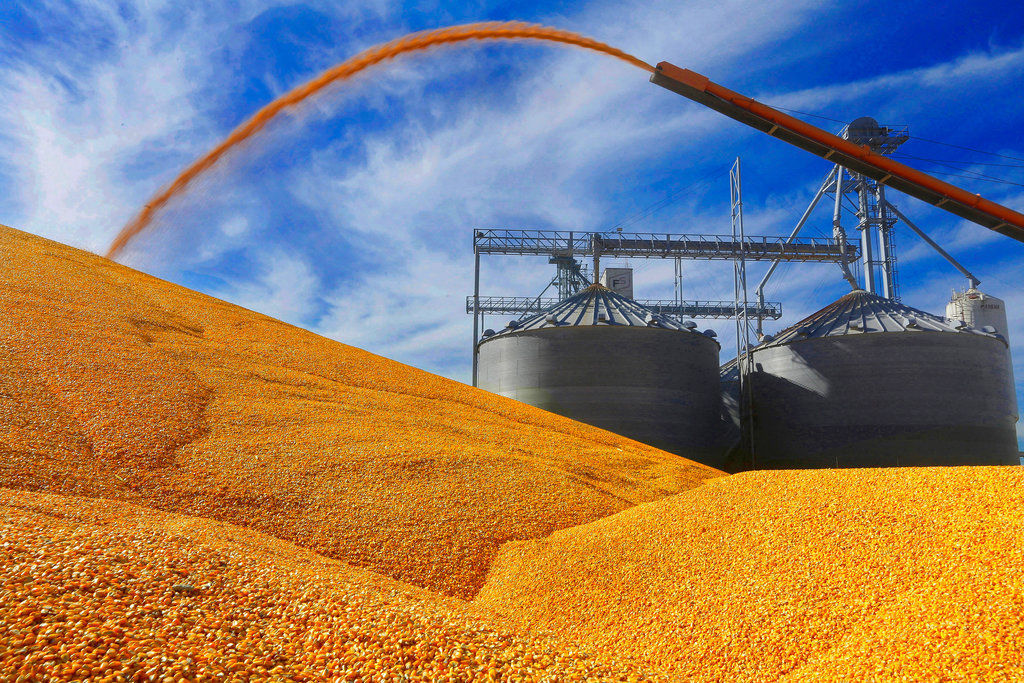 US Crop Report