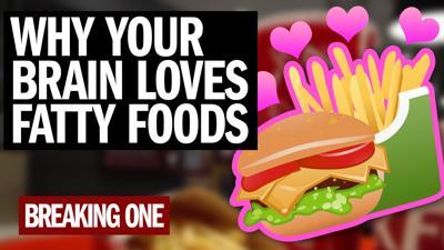Breaking One Fatty Foods