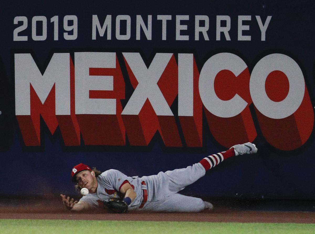 GALLERY: St  Louis Cardinals in Mexico | Sports | herald