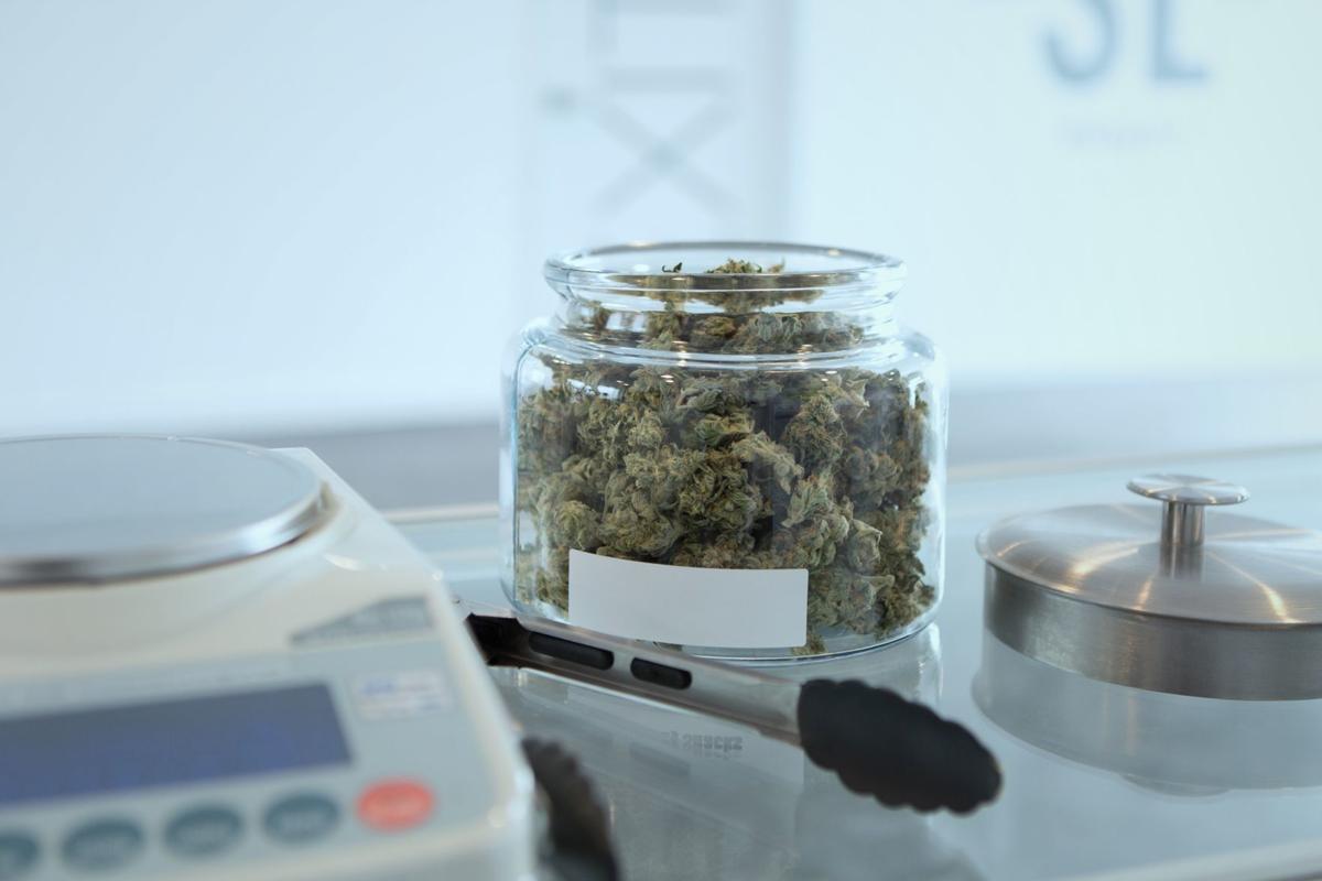 Unsplash-marijuana