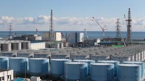 Workers Resume Removing Fuel Rods At Fukushima Power Plant