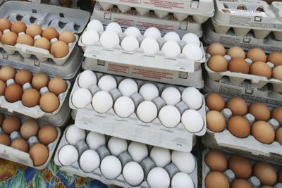 Eggs Health