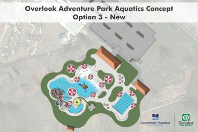 Option 3: New pool in Nelson Park 1102