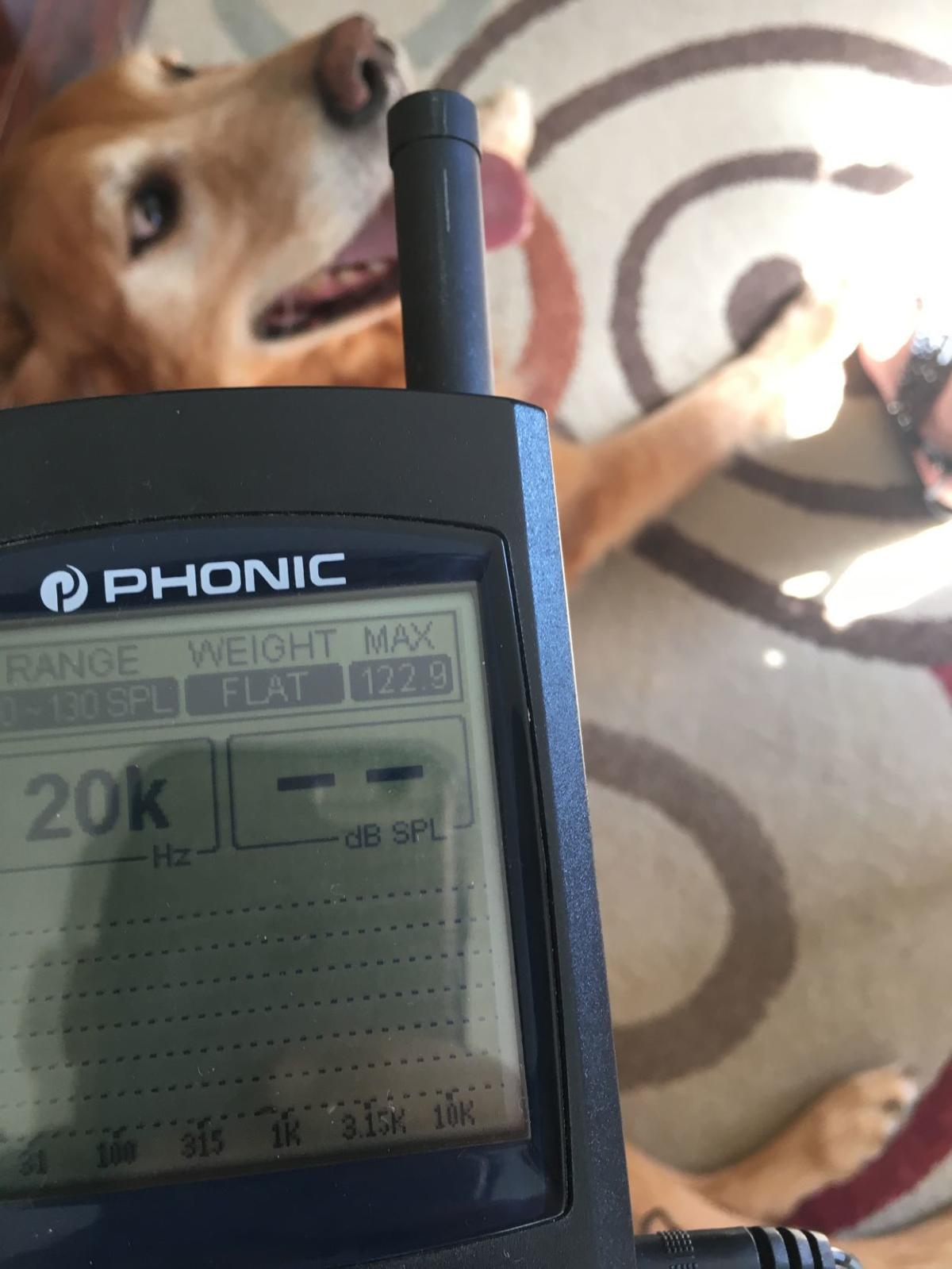 Dog with 122.9 decibel bark